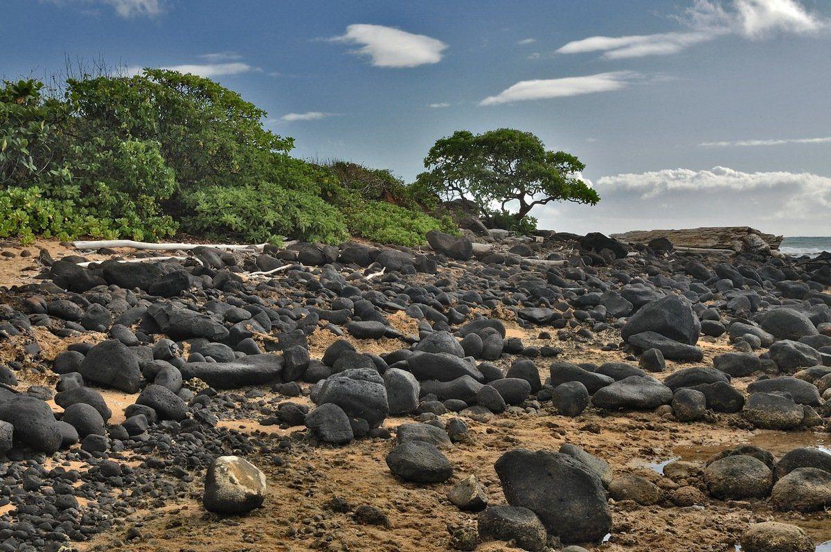 пейзаж, море, отлив, камни, Андрей Станко