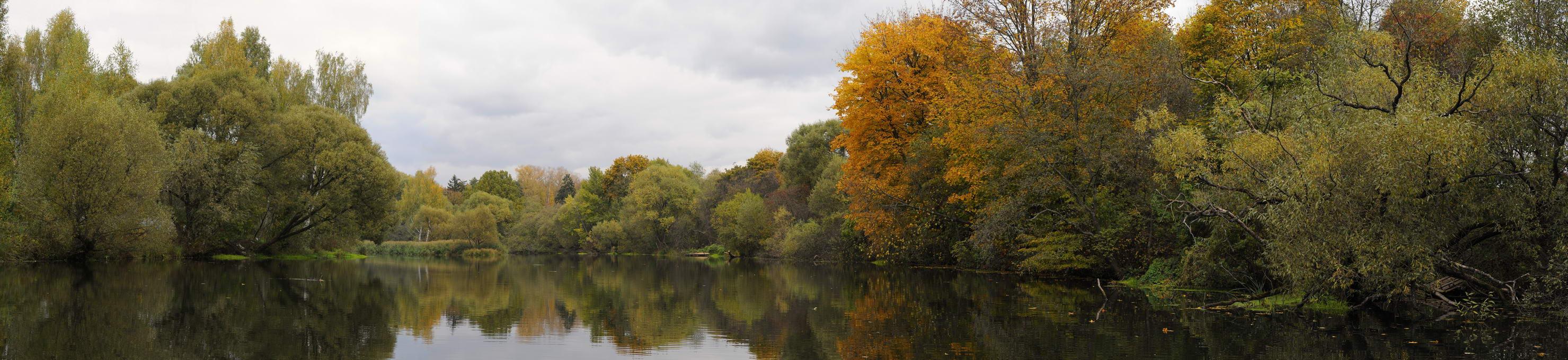 панорама, осень, D.G.