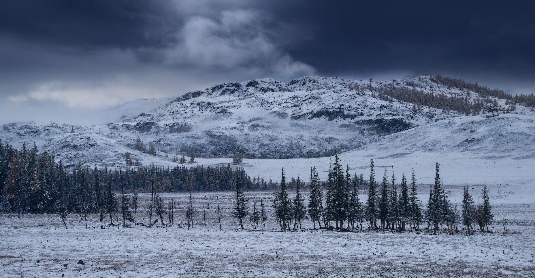 алтай, горы, осень, зима, Владимир Ляпин