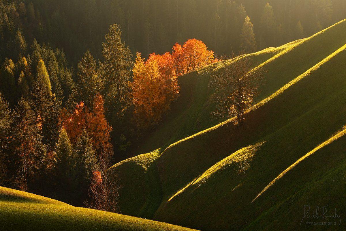 Alpen, Alps, Dolomiten, Dolomites, Dolomiti, Italia, Italien, Italy, South Tyrol, Tyrol, Alta badia, Trentino, Veneto, Beluno, Europe, daniel rericha, autumn, valleys, alpine valleys, autumn trees, meadows, waves, , Daniel Rericha