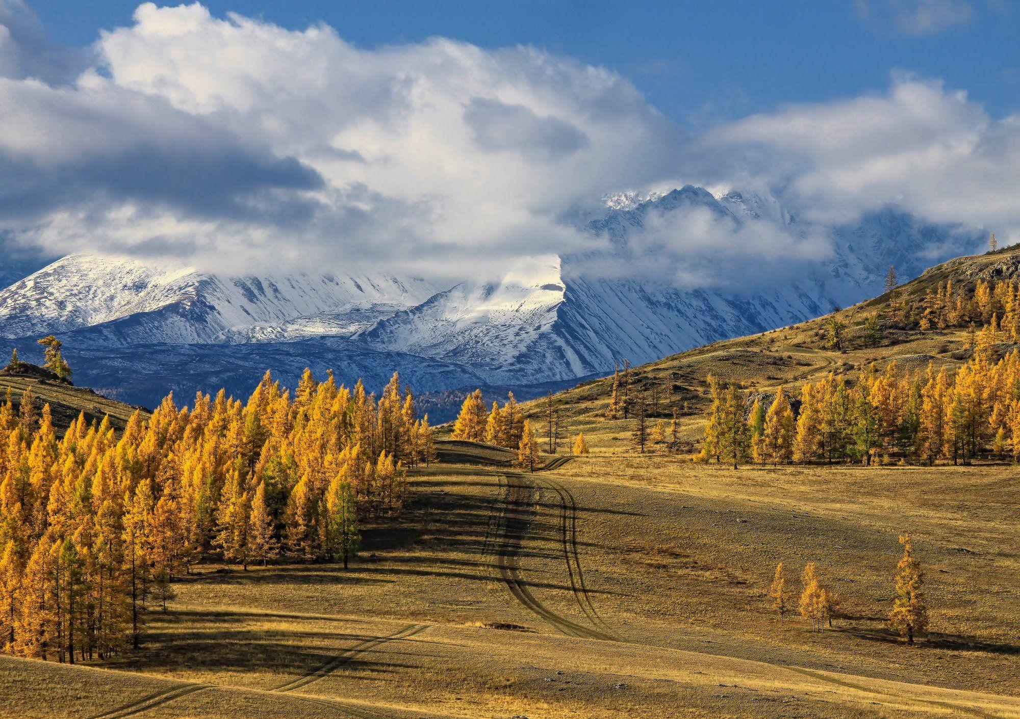 алтай, горный алтай, курай, осень, горы, северо-чуйский хребет, Галина Хвостенко