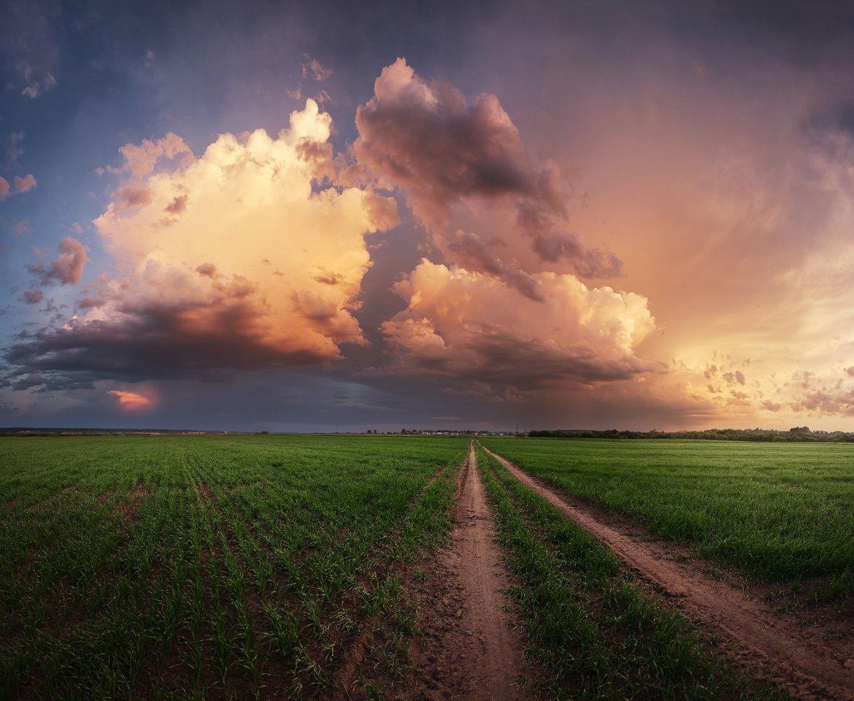 Дорога, поле, закат, луг, облака, гроза, вечер, весна, небо, Смольский Евгений