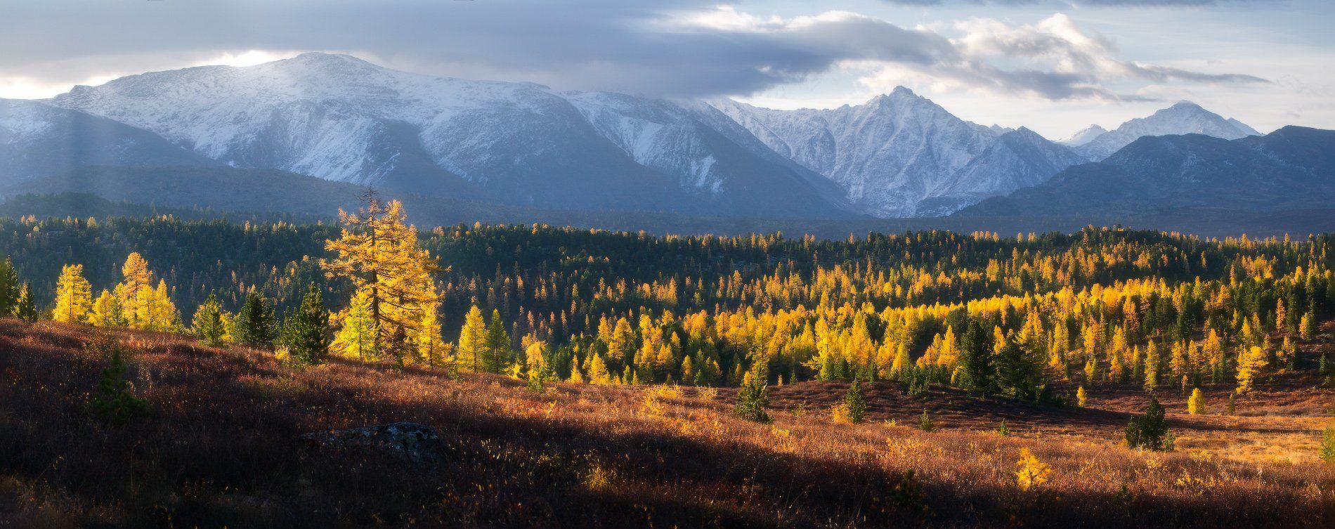 алтай, горы, осень, Владимир Ляпин