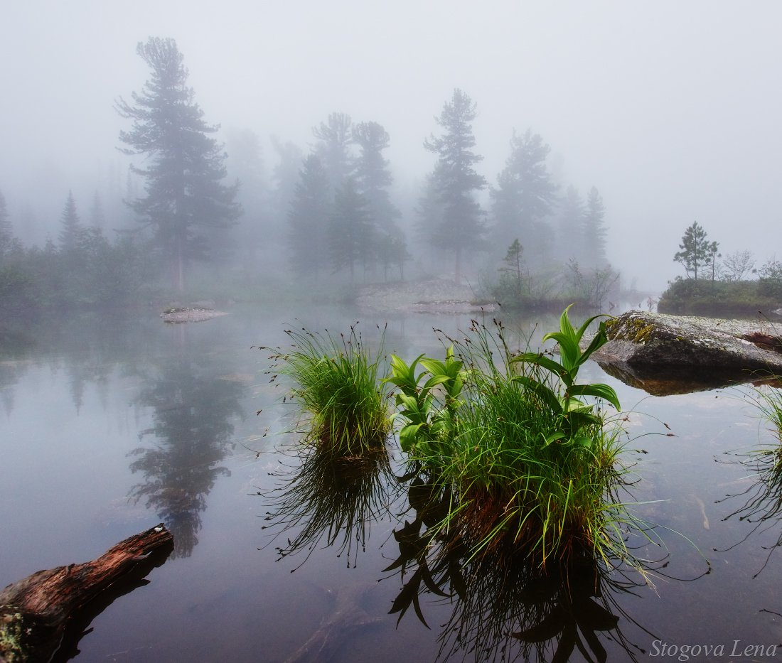 ергаки,озеро художников, Лена Стогова