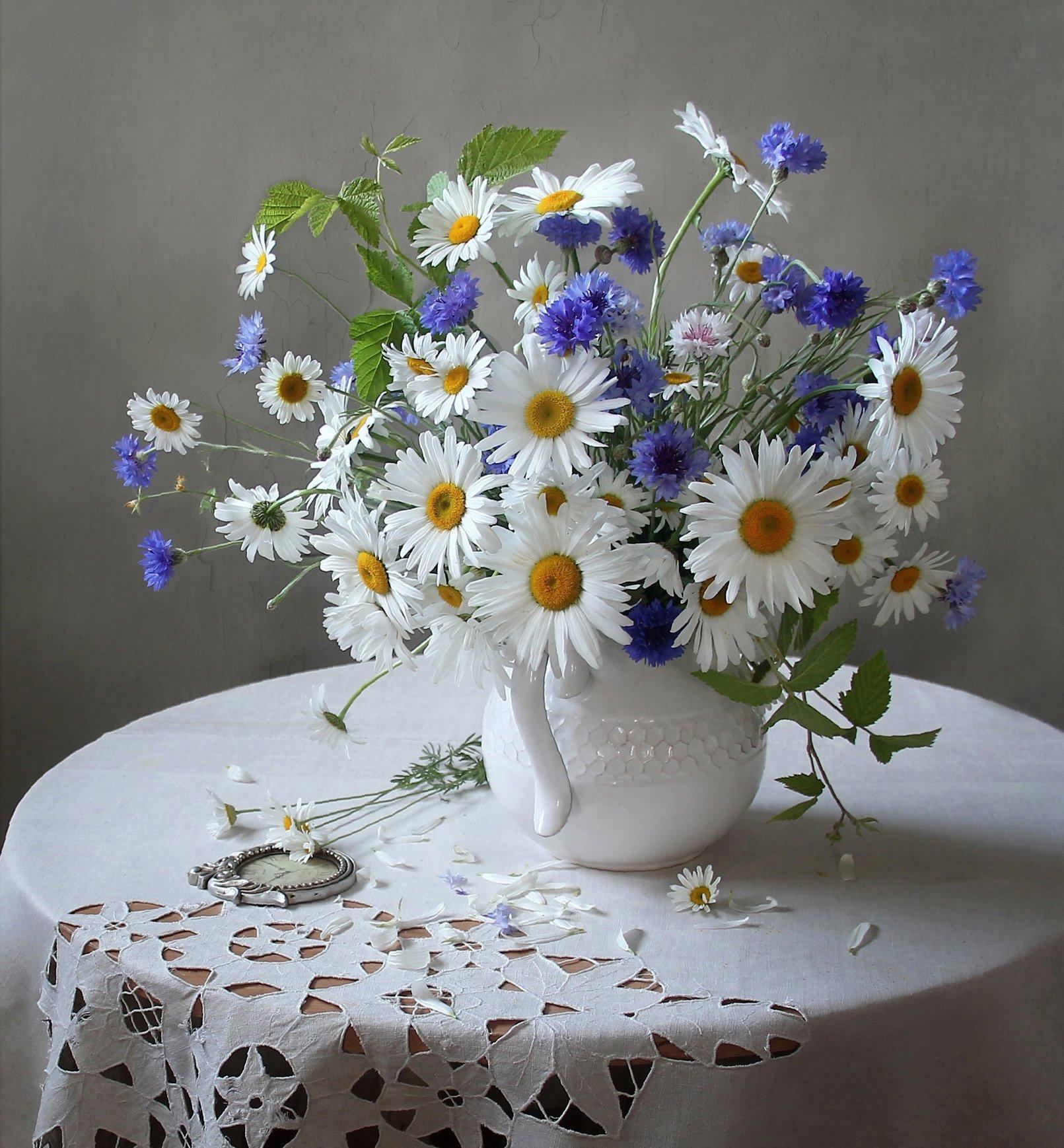 с днем рождения картинки полевые цветы понять, какие настроения