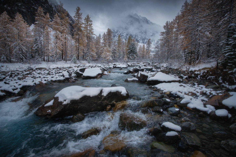 алтай, горы, осень, актру, караташ, Владимир Ляпин