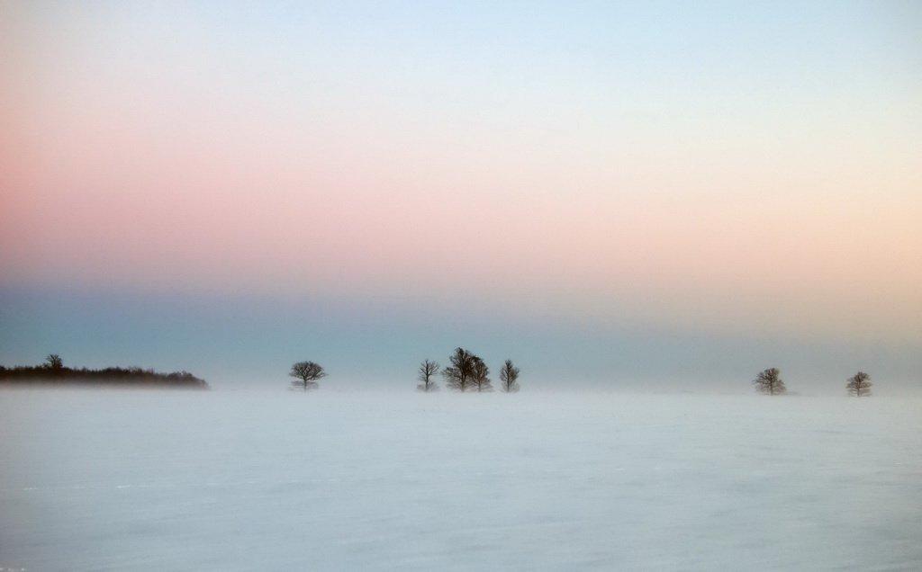 метель,lithuania,evening,snow,after sunset,fog,mist,minimalism,winter, senato®