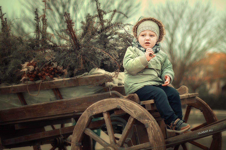 boy, portrait, мальчик, портрет, глаза, взгляд, село, лес, forest, станица, телега, Юлия Сафонова