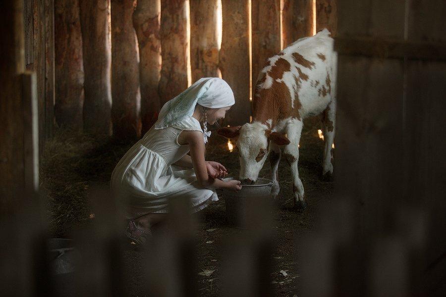 деи, корова,деревня,хозяйство,Алтай,корм,радость,детство,бабушка,село,отдых,путешествие,животные,, Оксана