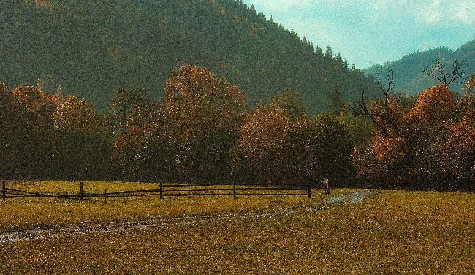 горы, осень, лошадка, дождь, Вьюшкин Игорь