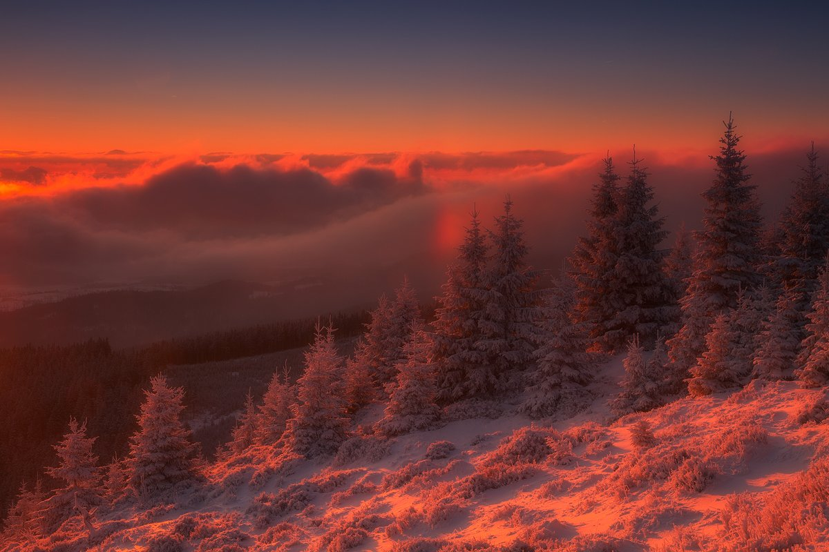 landscape,canon,winter, Iza i Darek Mitręga