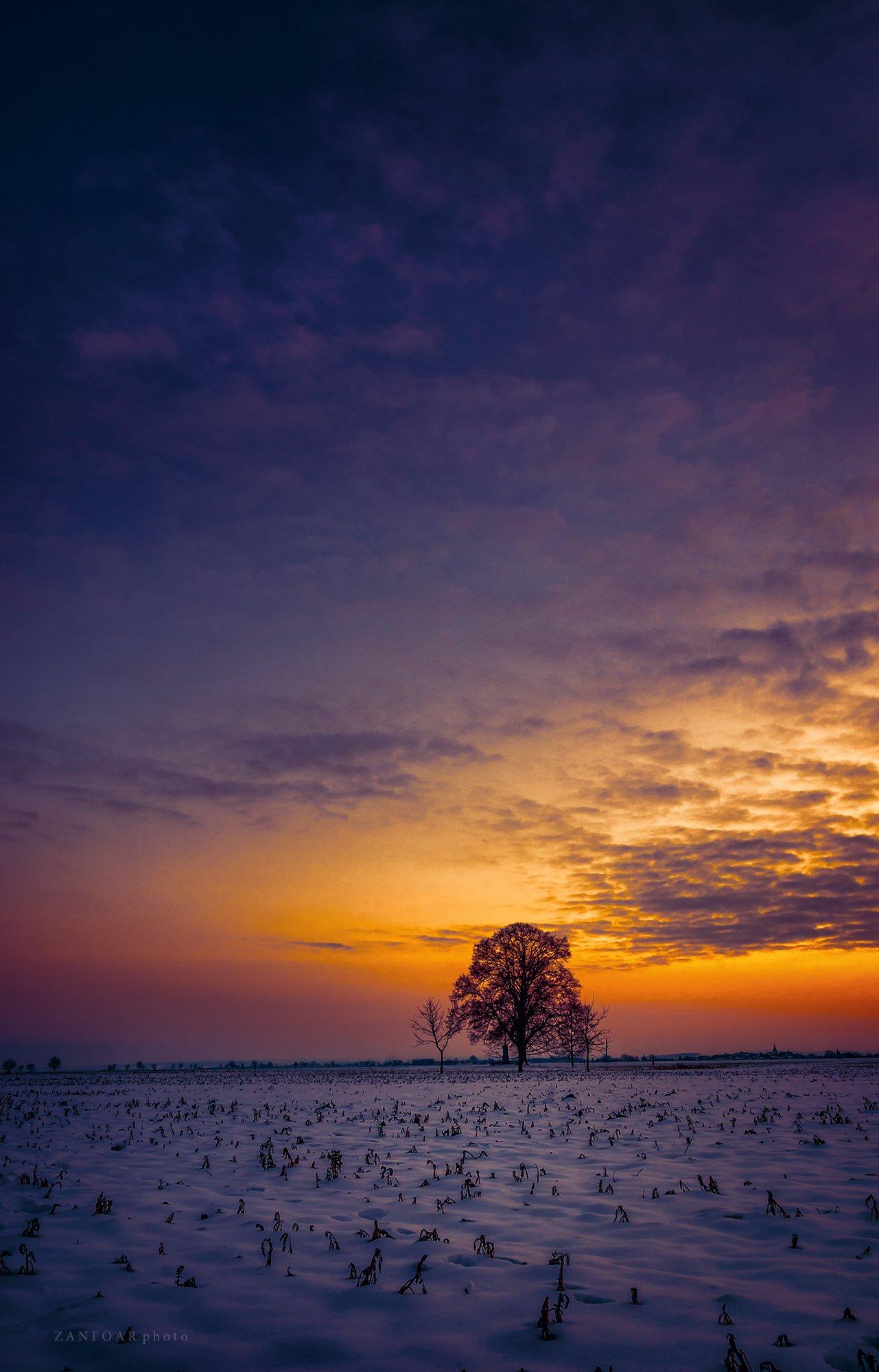 после заката, закат,после заката, поле, зима, снег, дерево, горизонт, облака, цвета, zanfoar, чешская республика, nikon d7000, Zanfoar