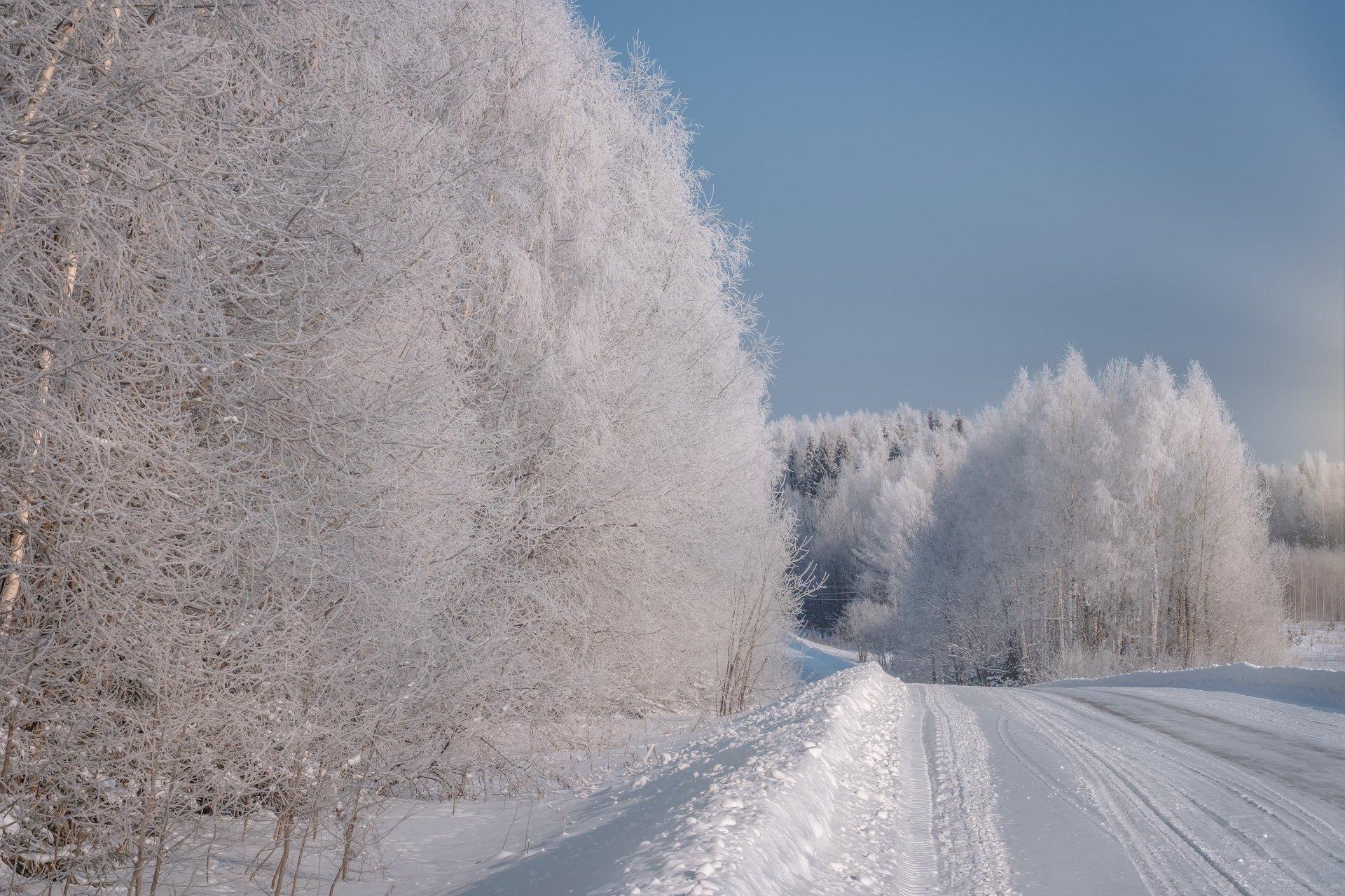 пейзаж, зима, деревья, дорога, снег, свет, солнце, белый, мороз, иней, Андрей Чиж