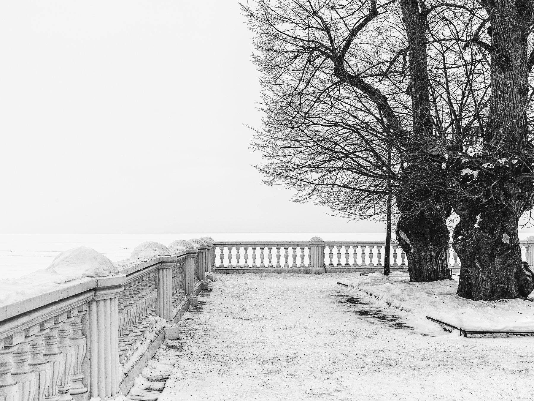 парк залив зима весна снег март прогулка никон, Вавилова Елизавета
