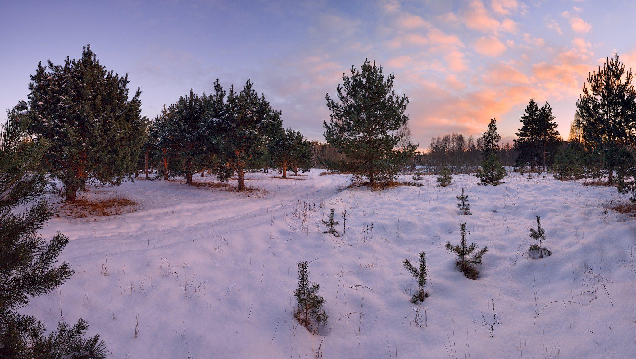 панорама, закат, зима, пейзаж, латвия, Алексей Мельситов