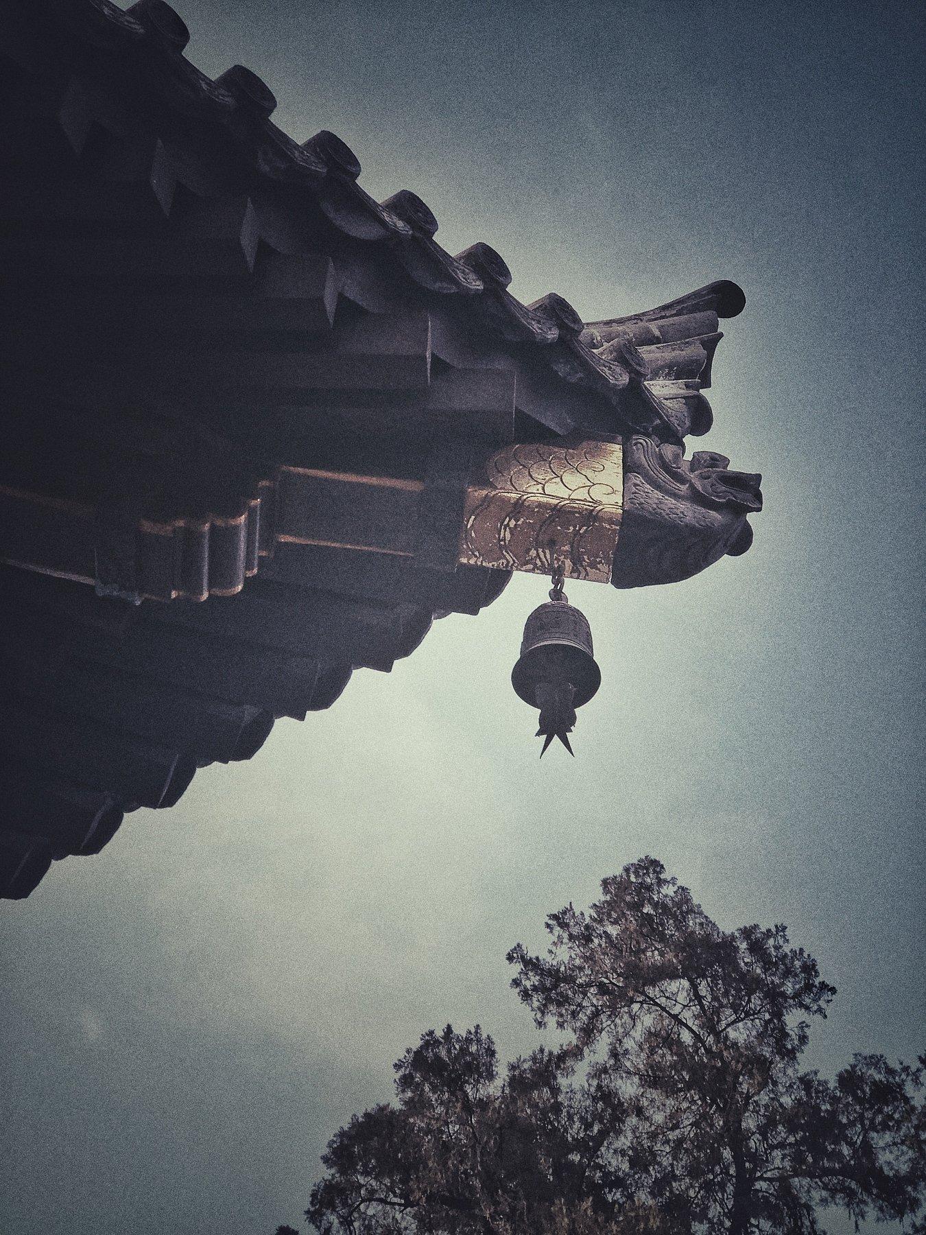 Great Wild Goose Pagoda, 雁滩一枝花
