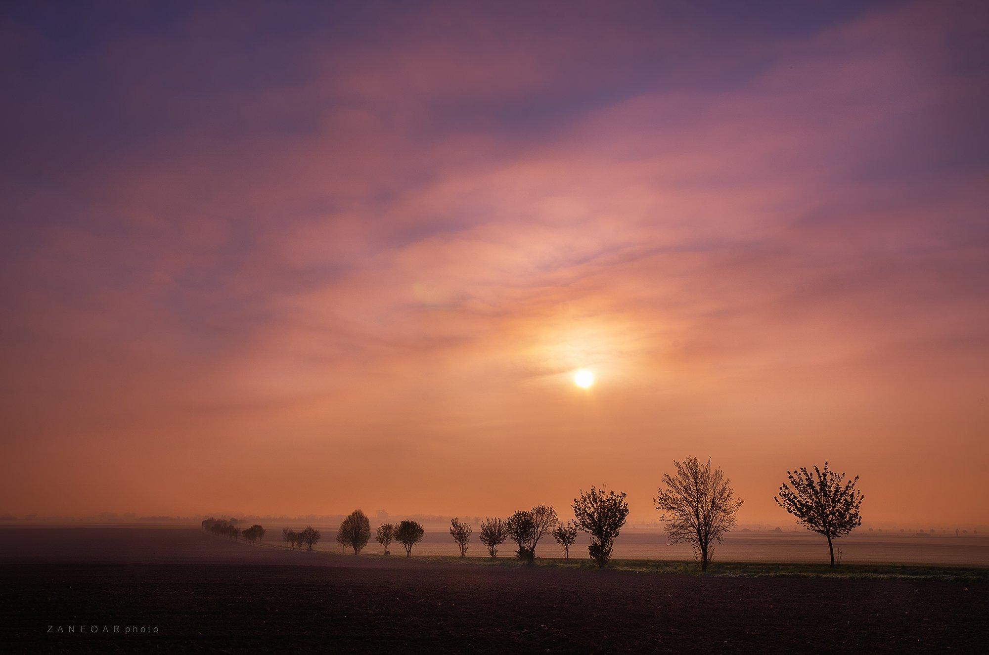 аллея,аллеи деревья деревья зима природа пейзаж снег снег небо облака солнце драматические поля линии никон d7000 zanfoar чешская республика,, Zanfoar