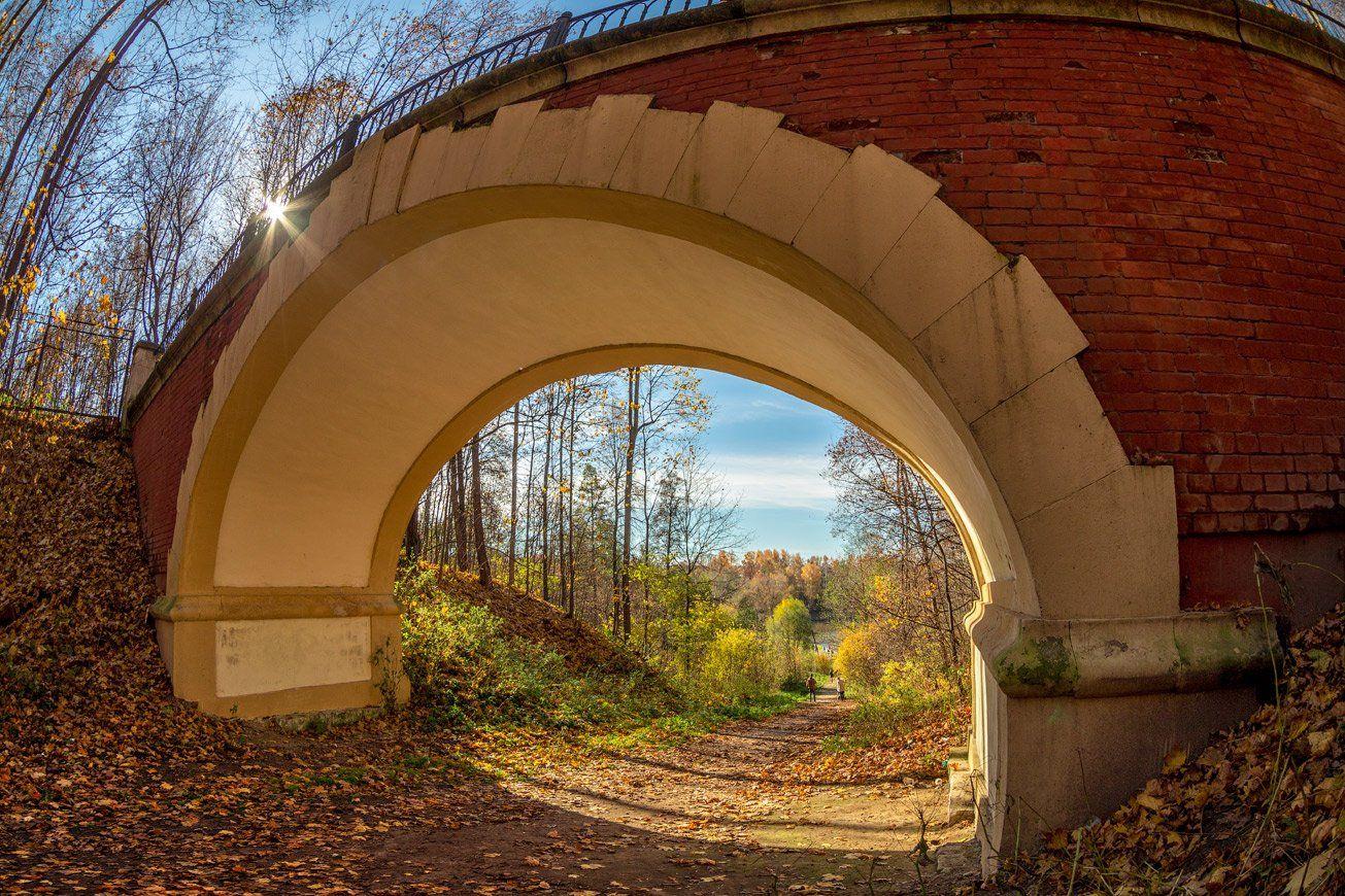 осень, листья, мост, природа, солнце, настроение, Виктор Климкин