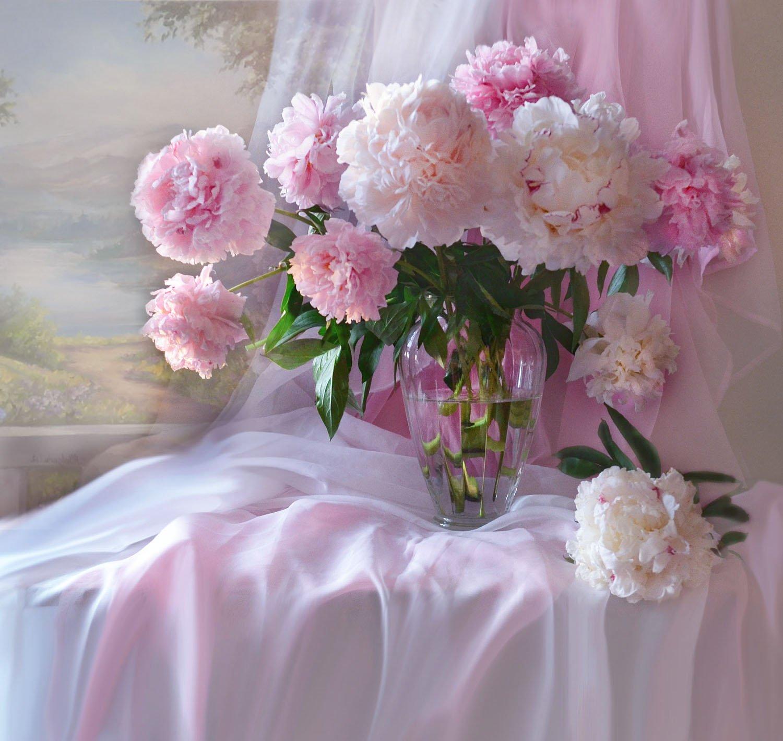 still life, натюрморт,лето, цветы, пионы, фото натюрморт, настроение, Колова Валентина