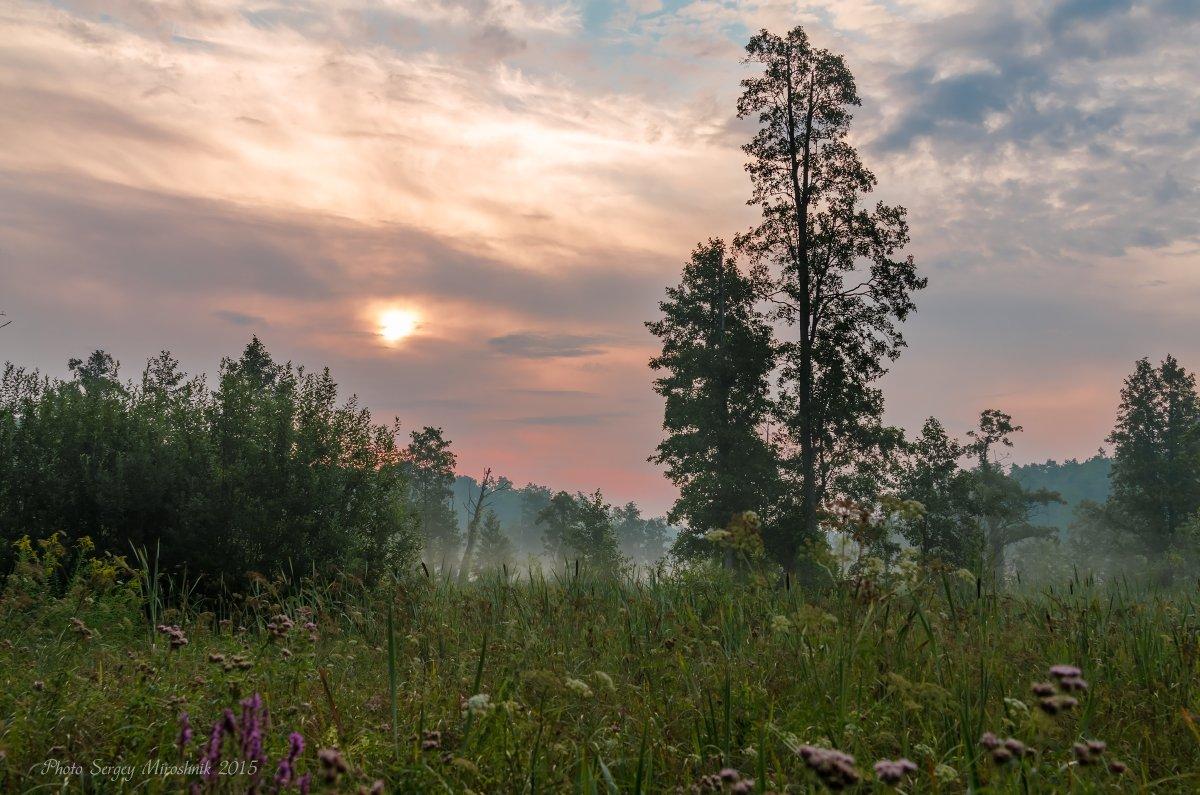 украина, клевань, пейзаж, путешествие, болото, утро, лето, небо, солнце, красиво., Сергій Мірошник