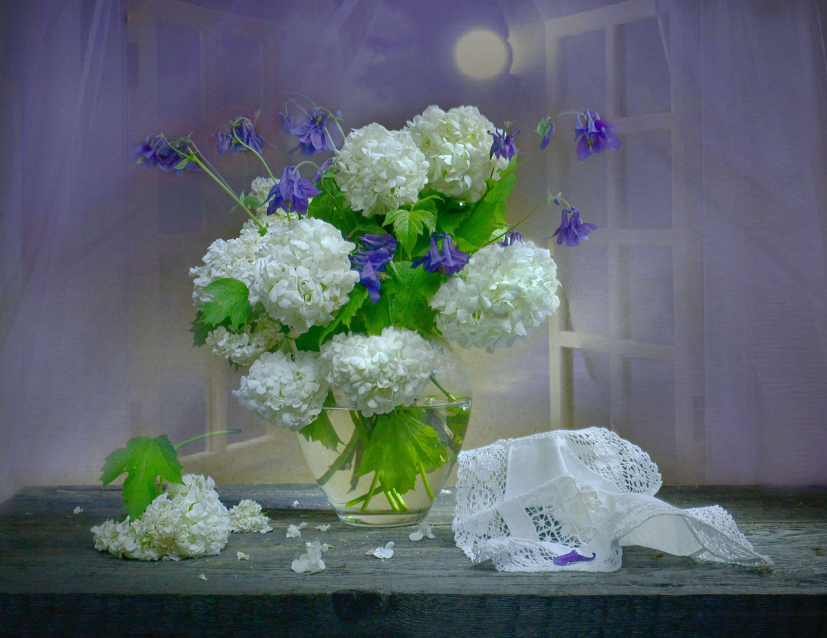 still life, натюрморт,  белая ночь, исход июня, июньский, калина, лето, сон в летнюю ночь, стихи, фото натюрморт, цветы, Колова Валентина