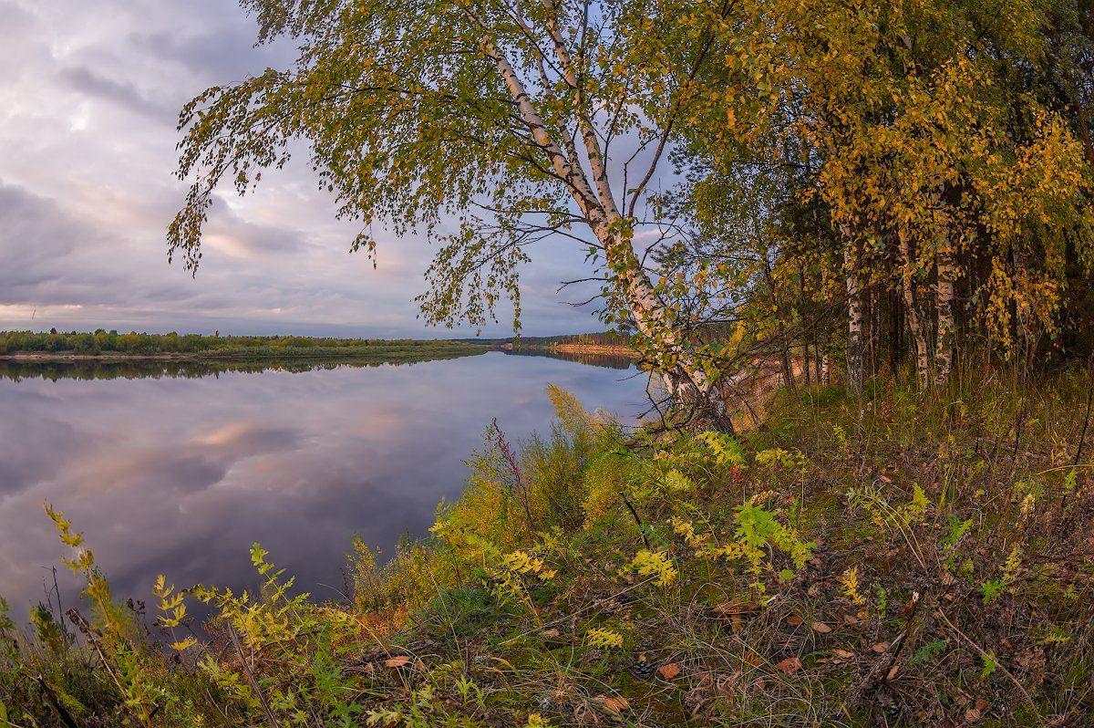 осень вечер река березы обрыв небо штиль, Марина Мурашова