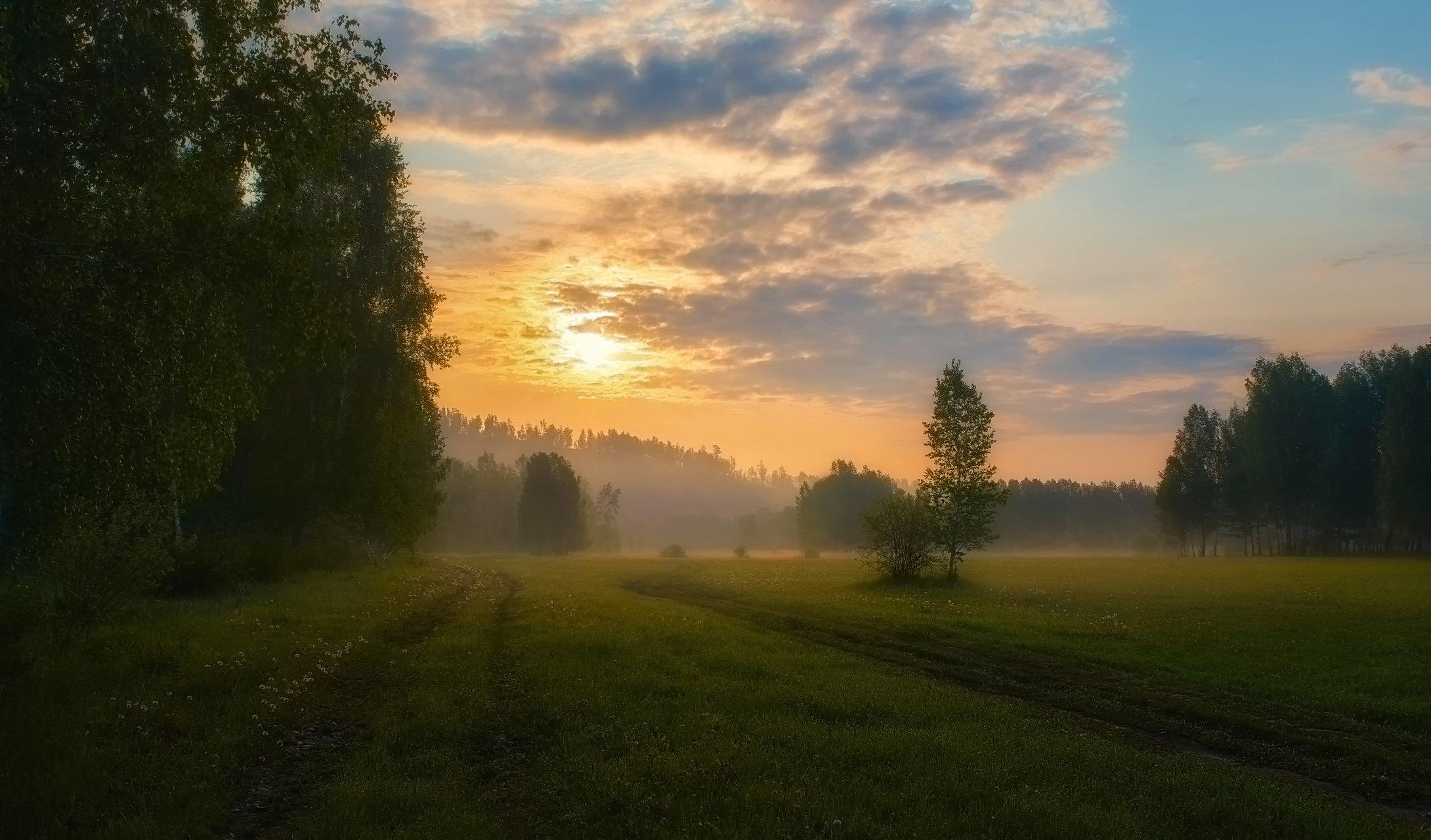 летнее утро,рассвет,луг,солнце,, Сергей