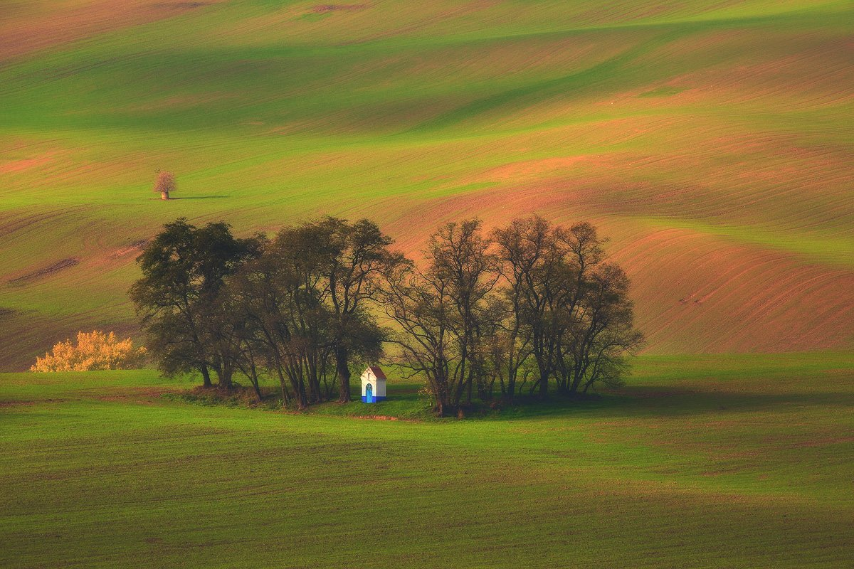 landscape,canon,light,spring,moravia, Iza i Darek Mitręga