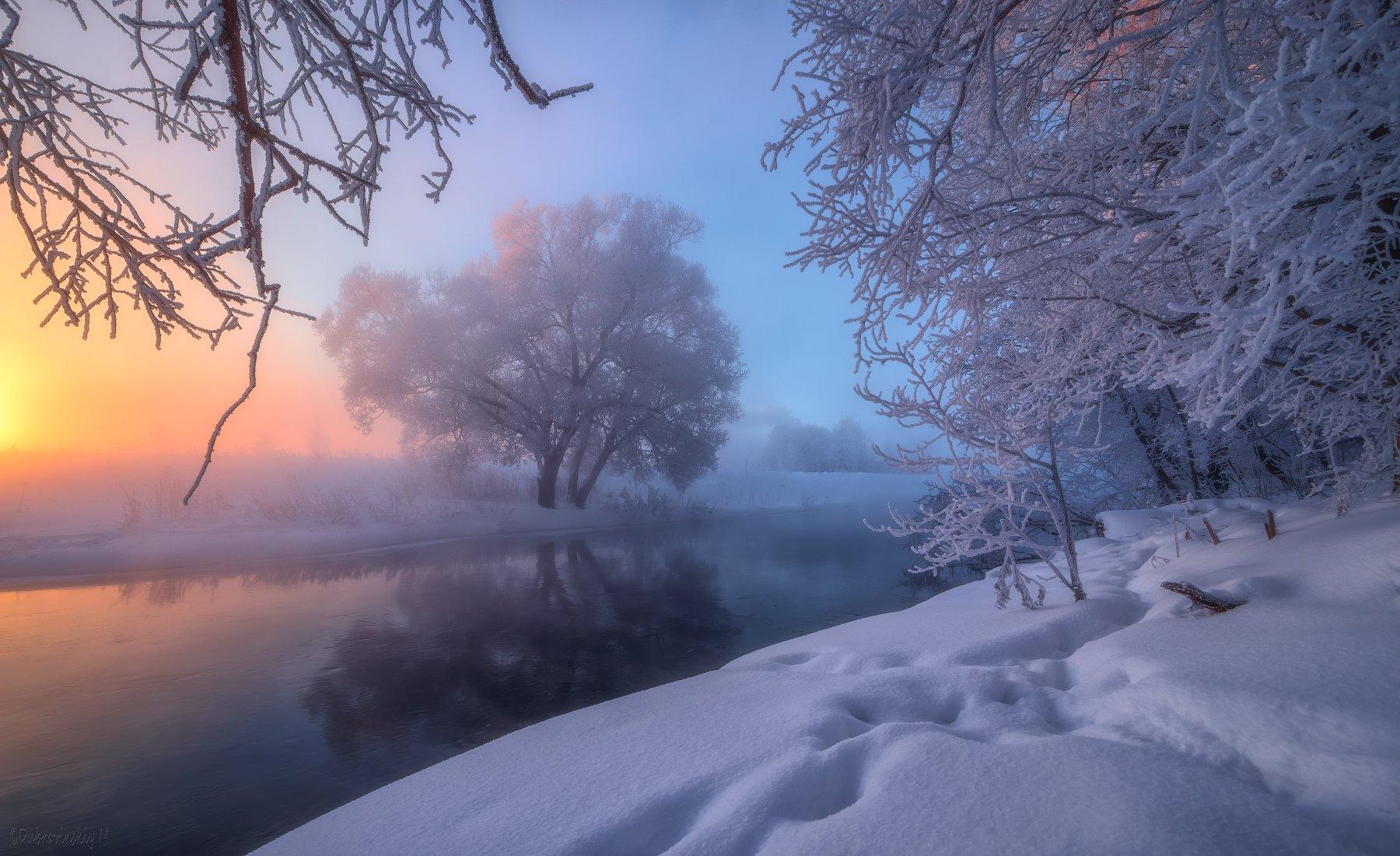 истра, рассвет, туман, мороз, зима, дерево, река, Михаил Дубровинский