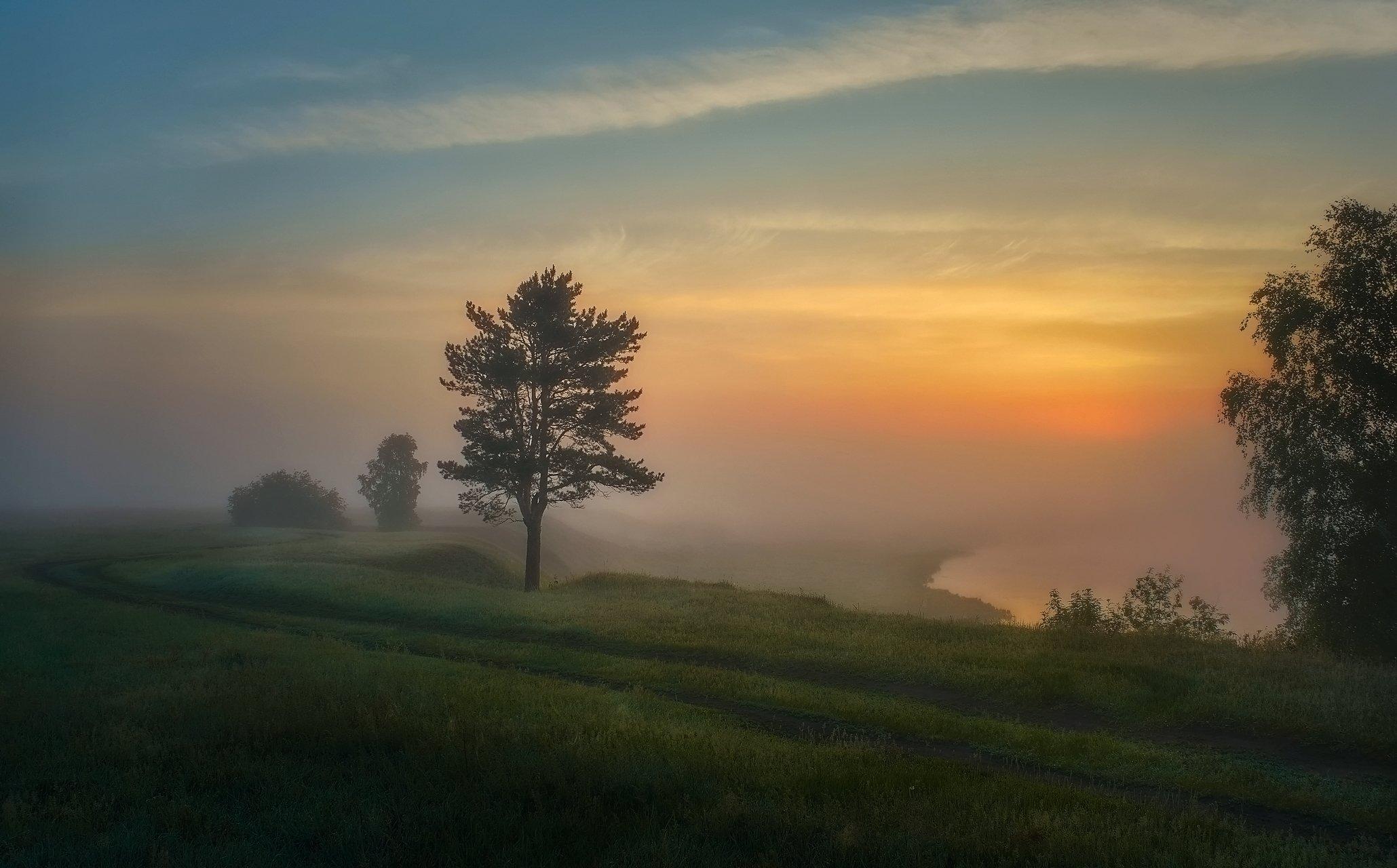 летнее утро,красочный восход солнца,туман,берег озера,, Сергей