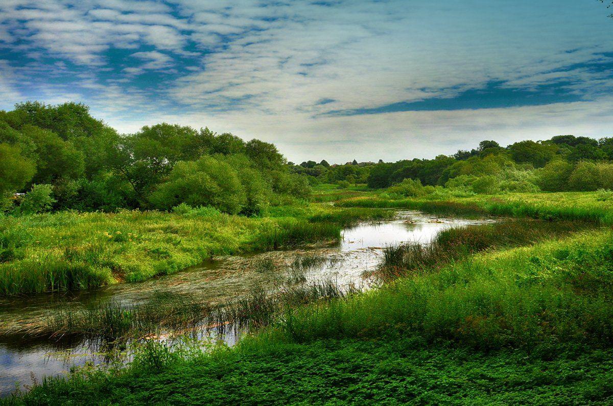 река, природа, лето, пейзаж, Rimantas Petrikas