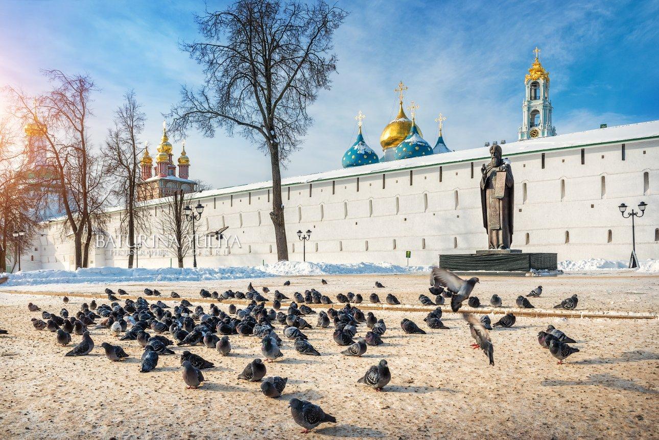 сергиев посад, голуби, лавра, зима, Юлия Батурина