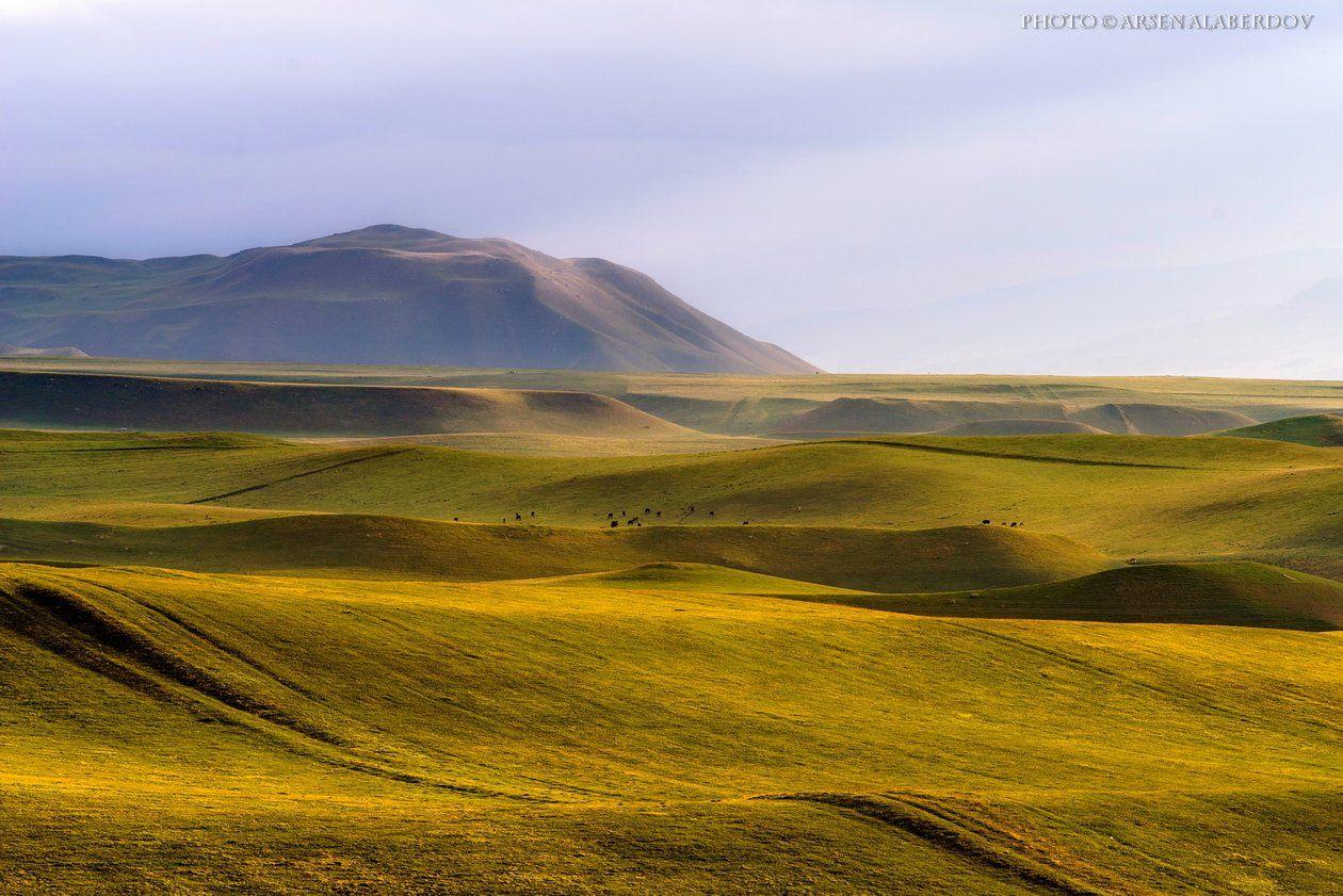 весна, поле, холмы, равнина, долина, утро, небо, карачаево-черкесия, кавказ, простор, АрсенАл