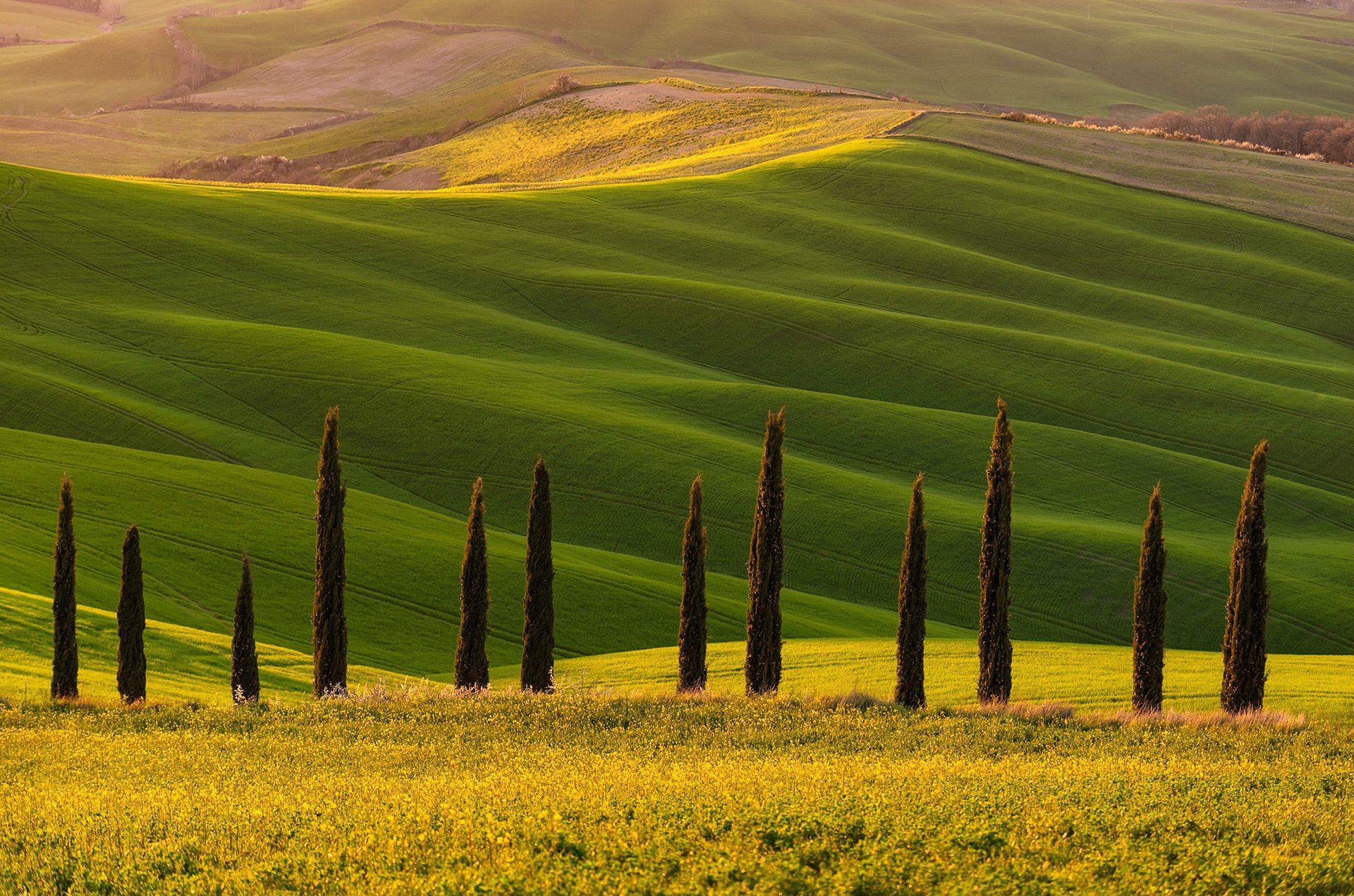 Tuscany, Crete Senesi, spring, valley, Тоскана, cipreses, Andrey Trifonov