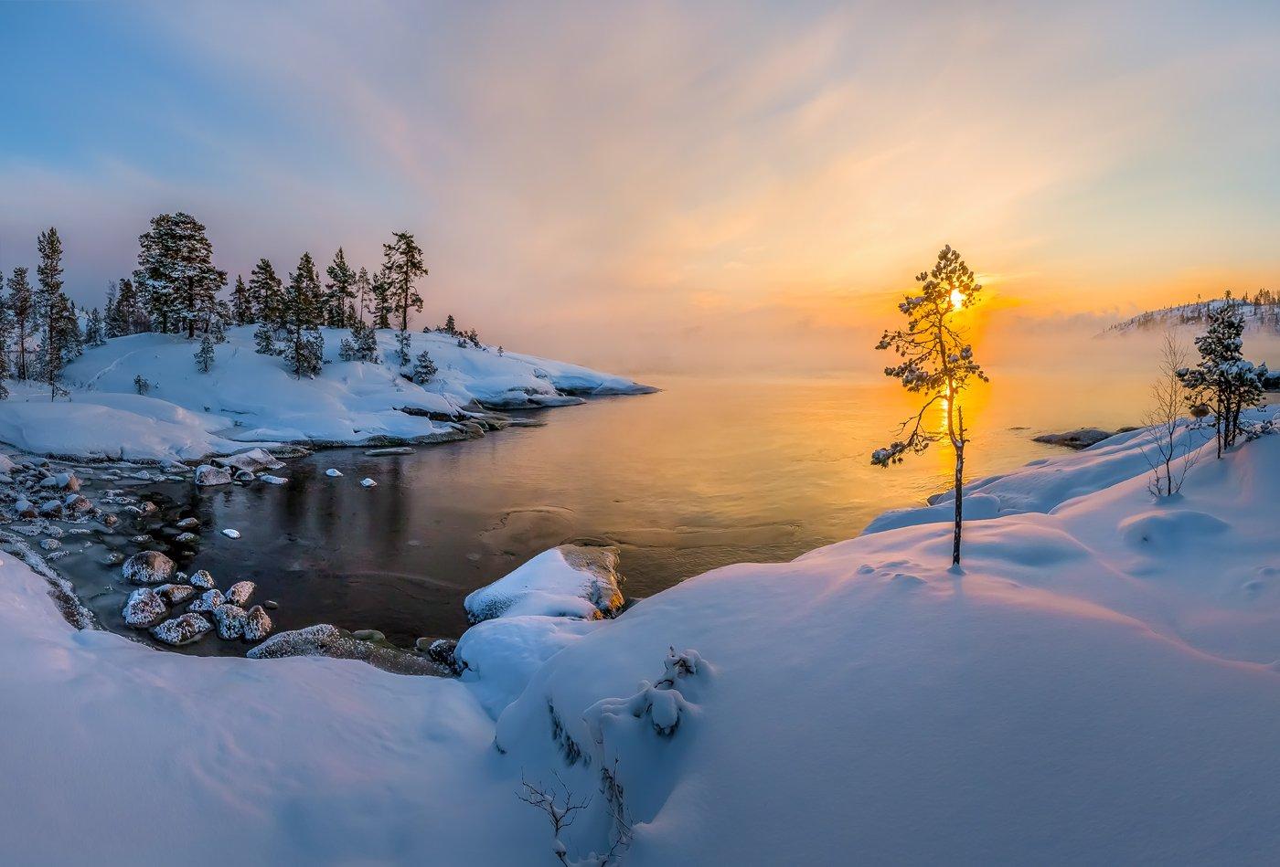ладожское озеро, карелия, остров, зима, снег, фототур, лёд, шхеры, рассвет, сосна, солнце,, Лашков Фёдор