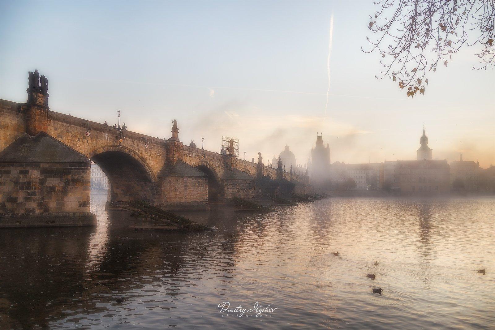 Прага, Чехия, Карлов мост, утро, туман, Влтава, река, мост, природа, путешествие, фототур, Илышев, Дмитрий Илышев (ilyshev.photo)