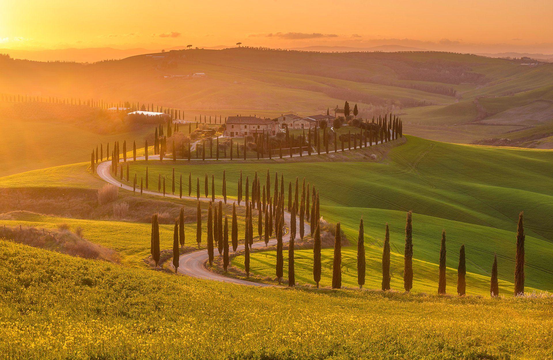 Tuscany, Crete Senesi, Italy, sunset, golden hour, Тоскана, cypress, Andrey Trifonov
