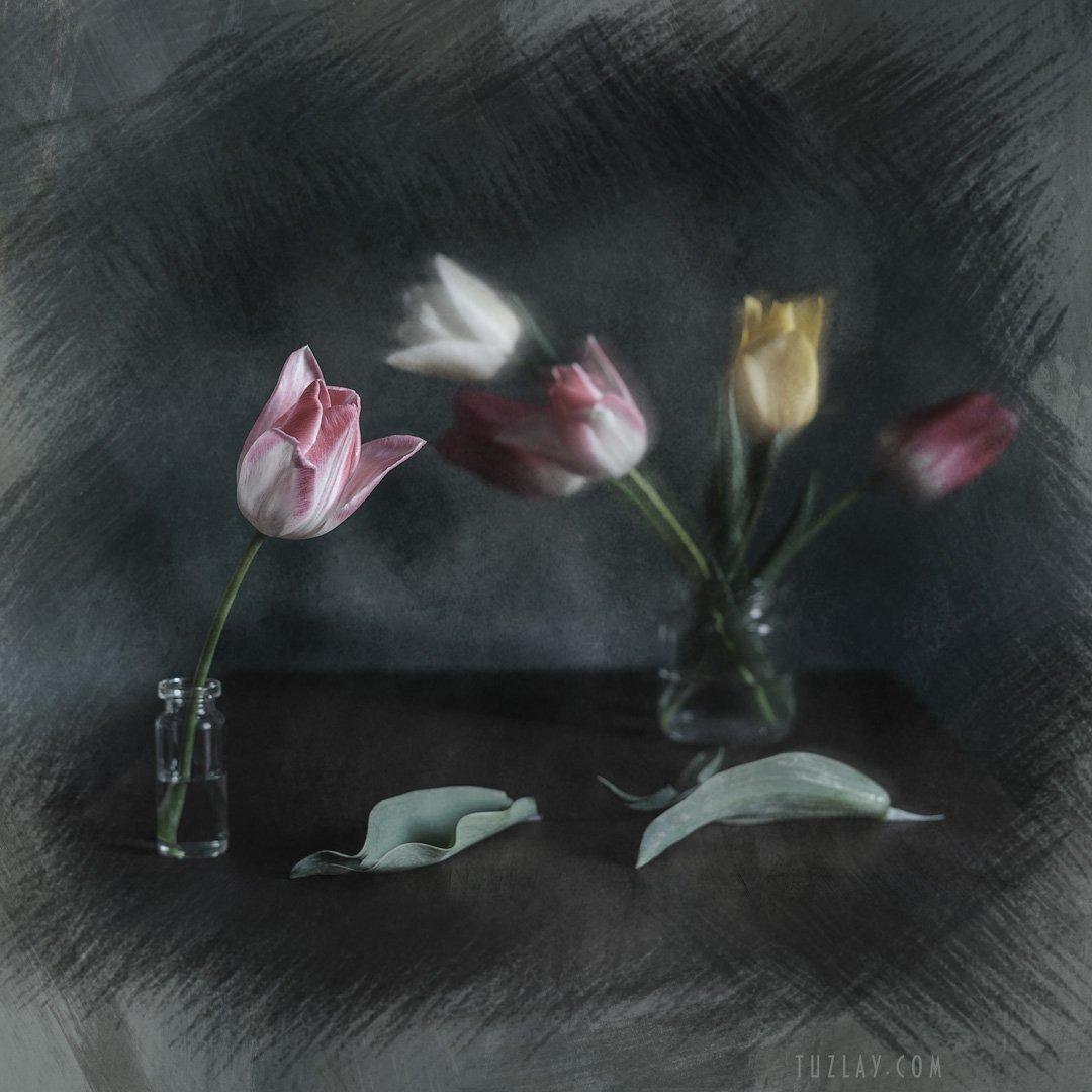 весна во флаконе, пузырек, тюльпаны, для холста, холст, Владимир Тузлай