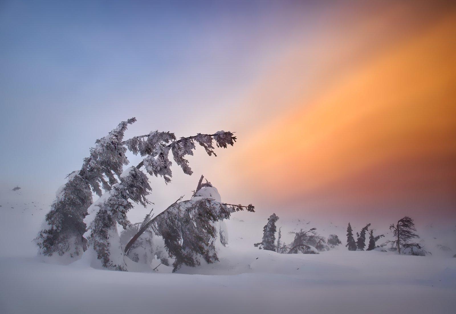 пейзаж, природа, урал, горы, снег, облака, Бродяга с севера