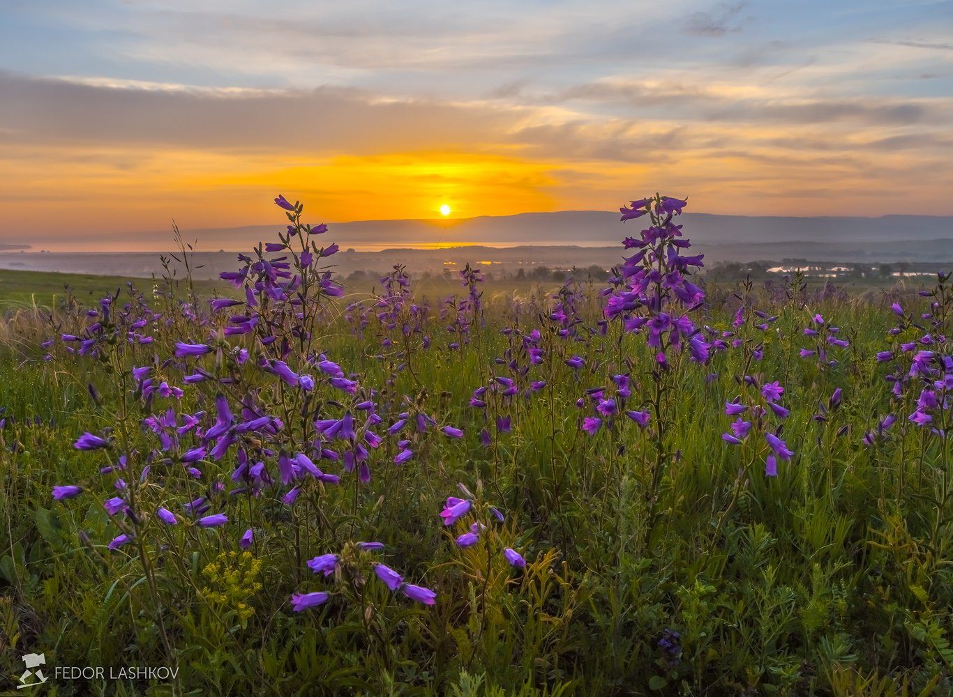pentax645z, pentaxrussia, pentax, ставропольский край,  путешествие, фотоальбом, цветы, природа, рассвет, облака, колокольчик, луг, степь, солнце, Лашков Фёдор