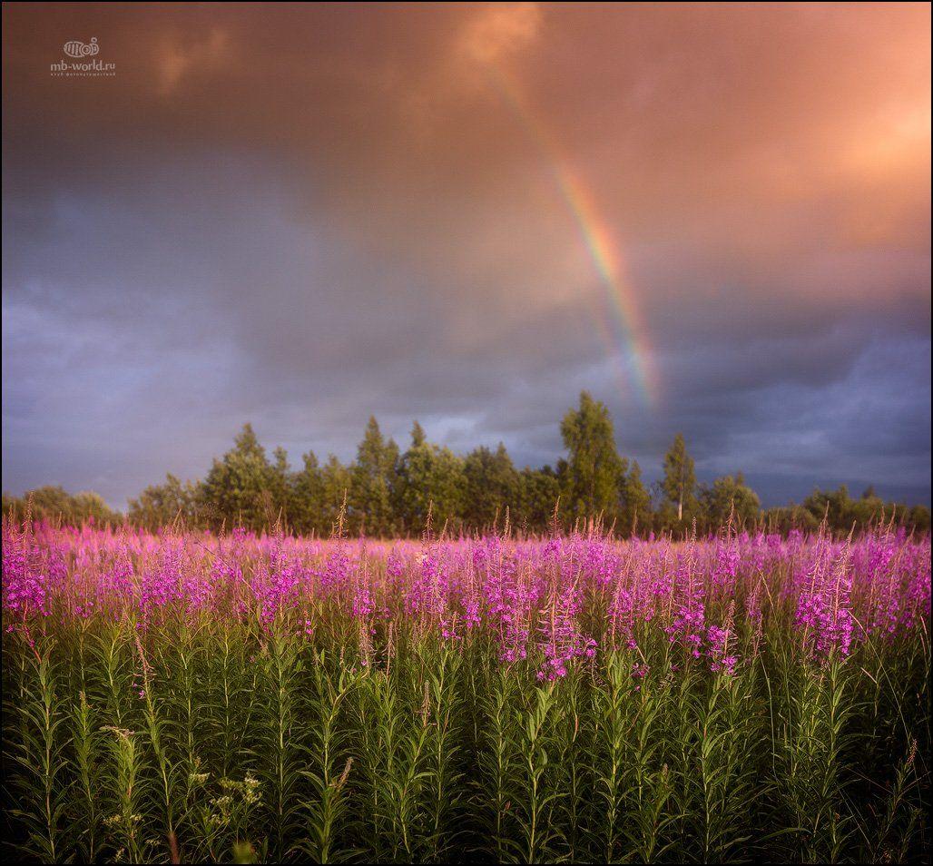 Россия, закат, радуга, пейзаж, Mikhail vorobyev