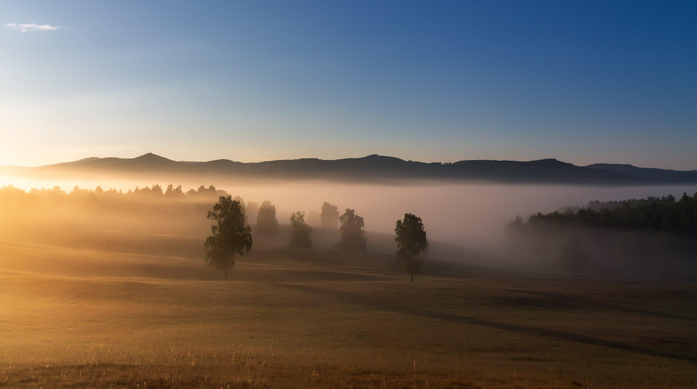 утро, рассвет, восход, туман, лучи, Леонид Максименко