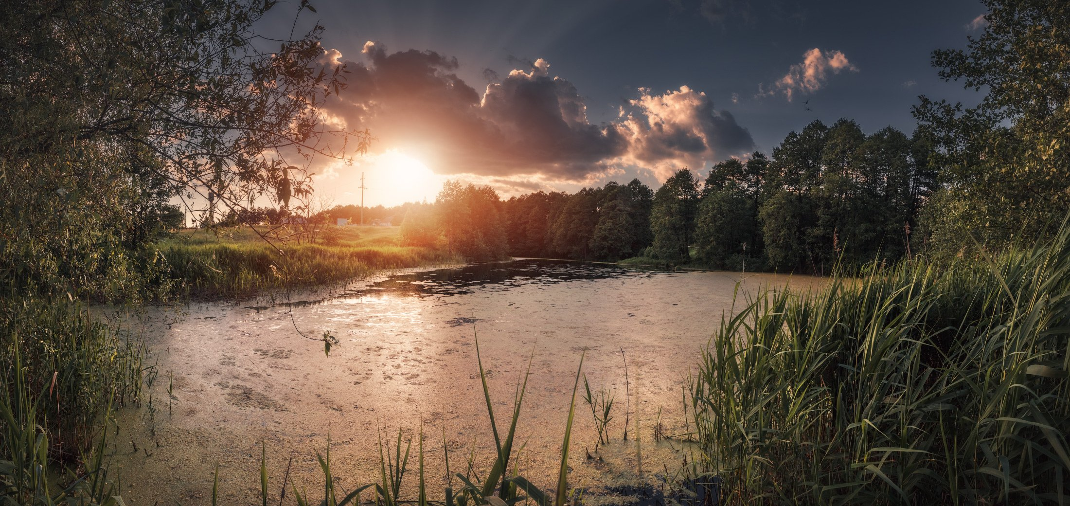 панорама, лето, закат,, Андрей Кровлин