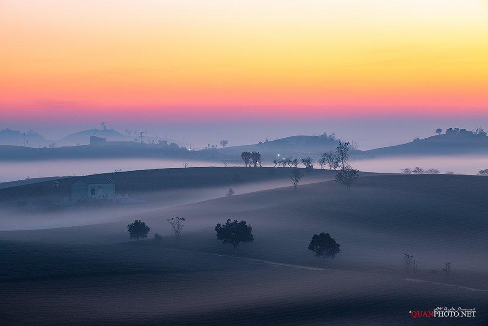quanphoto, landscape, nature, long_exposure, sunrise, dawn, hill, tea, plantation, mist, misty, highland, plateau, vietnam, quanphoto
