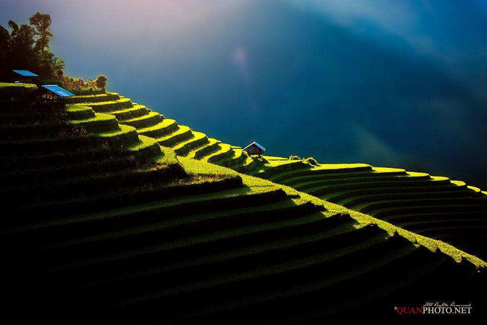quanphoto, landscape, sunlight, sundown, home, hill, magical, alone, rice, terraces, farmland, agriculture, vietnam, quanphoto