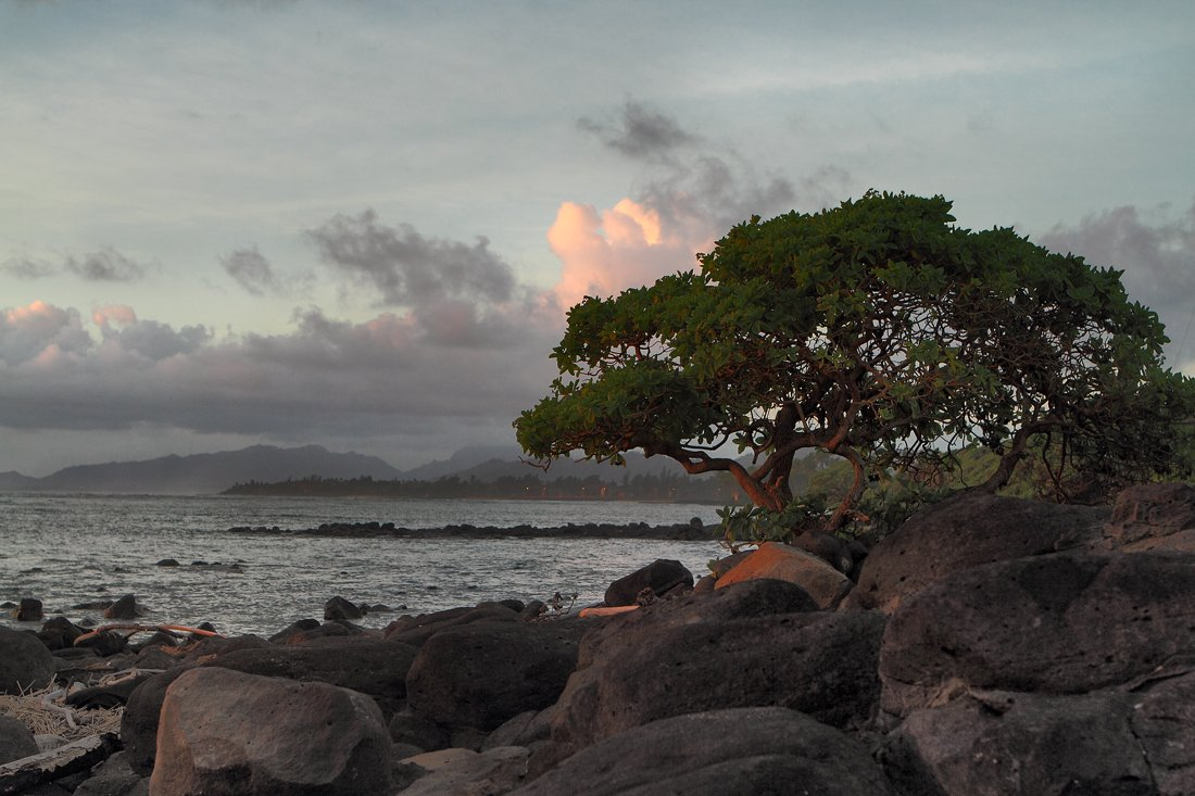 станко, пейзаж, kauai, hawaii, Андрей Станко