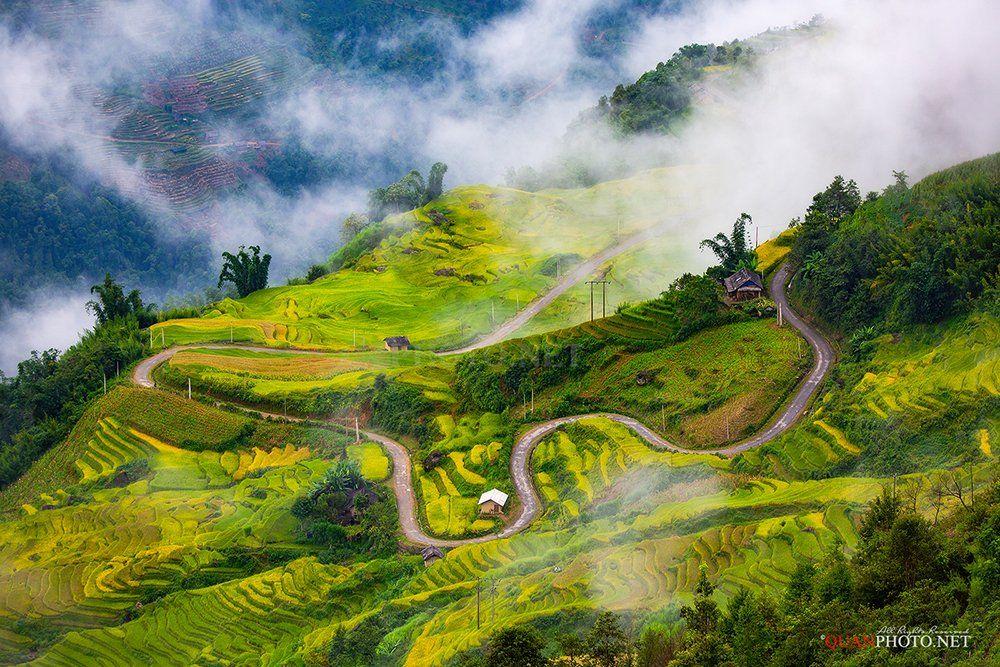 quanphoto, landscape, clouds, road, golden, harvest, rice, terraces, fields, highland, plateau, farmland, agriculture, vietnam, quanphoto