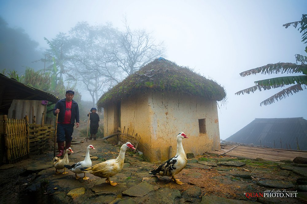quanphoto, people, rural, ethnic, minority, fog, foggy, ancient, house, traditional, highland, plateau, vietnam, quanphoto