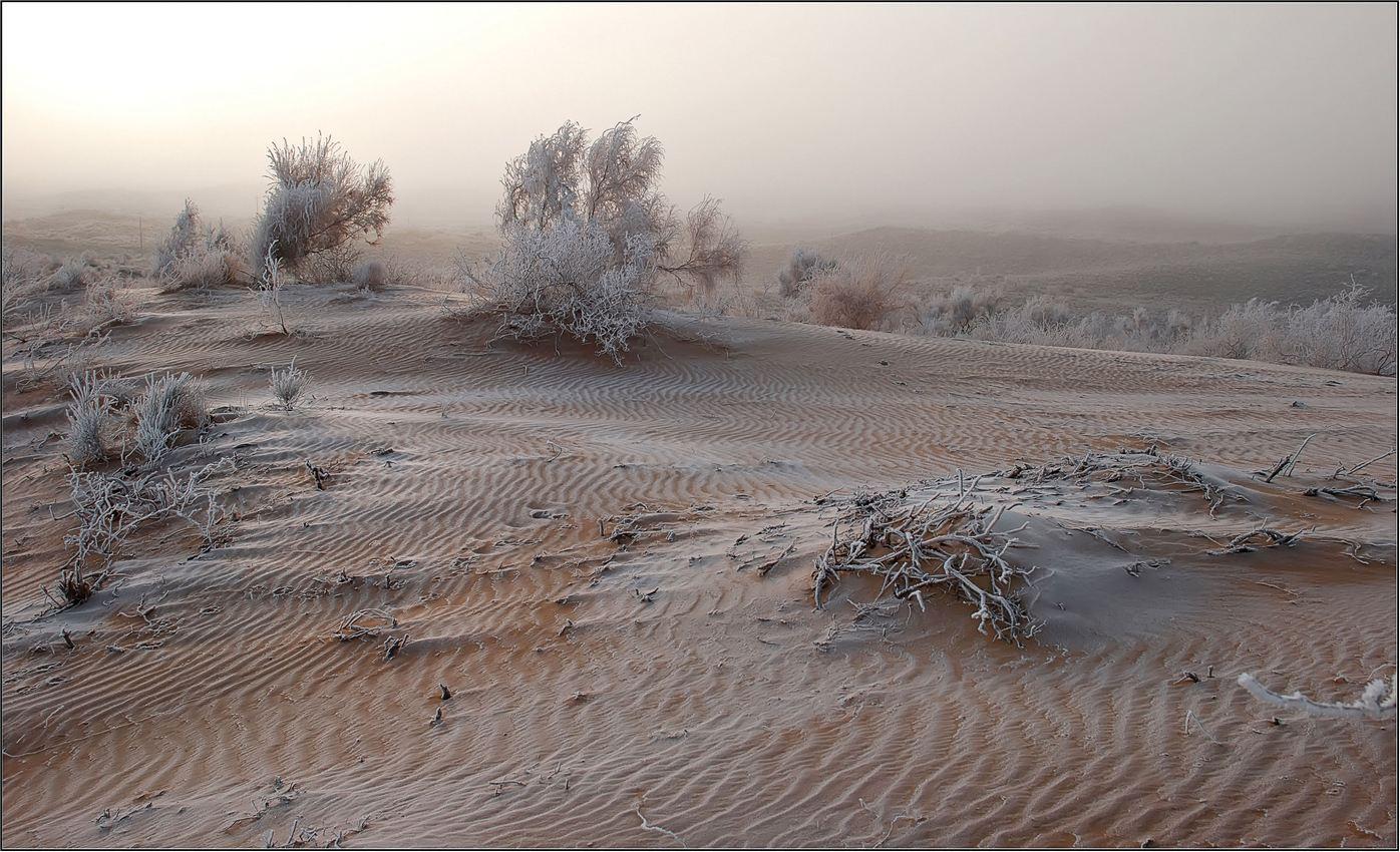природа, пески, казахстан, Геннадий Меремьянин