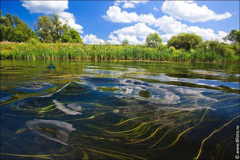 река, волна, лето, природа, пейзаж, Алексей Строганов www.BFoto.ru